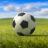 足球英雄杯 V1.2 安卓版