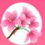 桃林交友 V1.0.0 安卓版
